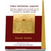 David Deida - Calea barbatului superior. Indrumar spiritual care te invata sa faci fata provocarilor din partea femeilor, a serviciului si a dorintelor sexuale