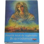 Viața Sfintei Xenia din Sankt Petersburg povestită pentru copii