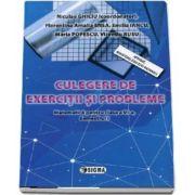Matematica pentru clasa a VI-a. Culegere de exercitii si probleme (Semestrul I) de Niculae Ghiciu