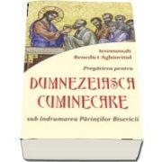 Pregatirea pentru Dumnezeiasca cuminecare sub indrumarea Parintilor Bisericii