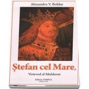 Stefan cel Mare, Voievod al Moldovei