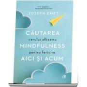 Cautarea cerului albastru: Mindfulness pentru fericire aici si acum