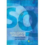 SQ. Inteligenta spirituala