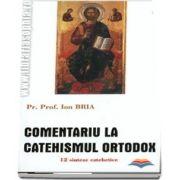 Comentariu la Catehismul Ortodox. 12 sinteze catehetice