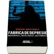 Fabrica de depresie: observati, intelegeti, actionati