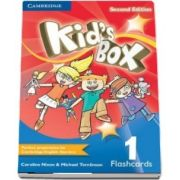 Kids Box Level 1 Flashcards (Pack of 96)