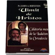 Uimit de Hristos. Calatoria mea de la Iudaism la Ortodoxie