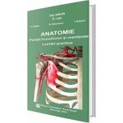 Anatomie. Peretii trunchiului si membrele, lucrari practice