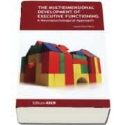 Laura Visu Petra, The multidimensional development of executive functioning
