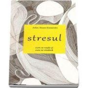 Stresul. Cum se naste si cum se vindeca - Arhim. Simeon Kraiopoulos