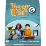 Tiger Time Level 6. Flashcards