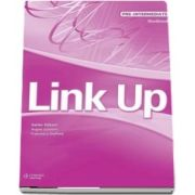 Link Up Pre Intermediate. Workbook