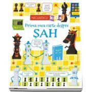 Prima mea carte despre SAH de Katie Daynes