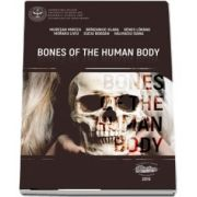 Bones of the human body - Muresan Mircea