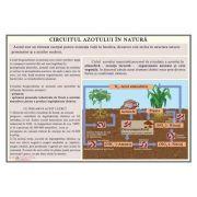 Plansa Circuitul azotului in natura
