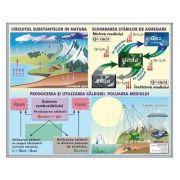 Plansa. Circulatia substantelor in natura. Poluarea mediului, Lumina. Masurarea vitezei luminii