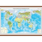 Harta zonelor de vegetatie pe glob 1400x1000 mm
