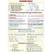 Numere reale. Functii 2. Plansa