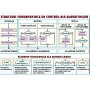 Plansa structuri fundamentale de control ale algoritmilor. Sisteme de numeratie