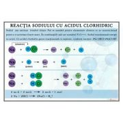 Reactia sodiului cu acidul clorhidric. Plansa