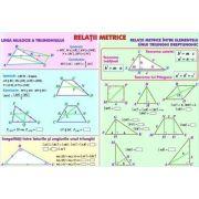 Relatii metrice. Sisteme si totalitati de ecuatii. Plansa