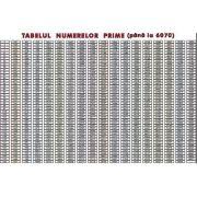 Tabelul numerelor prime pana la 6070. Plansa