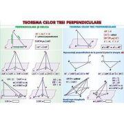 Teorema celor trei perpendiculare. Sfera circumscrisa corpurilor de rotatie. Plansa
