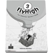 Fly High Level 3 Fun Grammar Teachers Guide