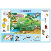 Plansa Insecte. Meserii