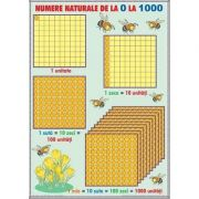 Numere naturale de la 0-1000 - Operatii cu numere naturale. Plansa DUO