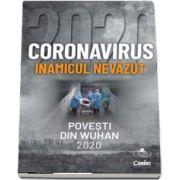 Coronavirus. Povesti din Wuhan 2020 - Inamicul nevazut