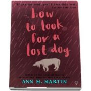 How to Look for a Lost Dog
