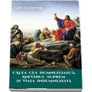 Xavier Chico, Calea cea Dumnezeiasca, Adevarul Suprem si Viata Indumnezeita