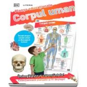 Corpul uman. Planse educationale