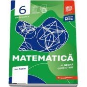 Matematica. Algebra, geometrie. Caiet de lucru. Clasa a VI-a. Initiere. Partea a II-a - Colectia mate 2000+