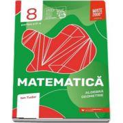 Matematica. Algebra, geometrie. Caiet de lucru. Clasa a VIII-a. Initiere. Partea a II-a - Colectia mate 2000+
