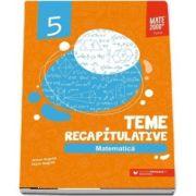 Matematica, teme recapitulative pentru clasa a V-a