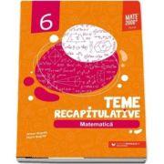 Matematica, teme recapitulative pentru clasa a VI-a