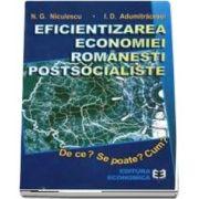 Eficientizarea economiei romanesti postsocialiste. De ce? Se poate? Cum?
