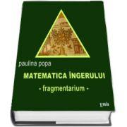 Matematica ingerului - fragmentarium