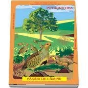 Pasari din fauna Romaniei care traiesc la campie