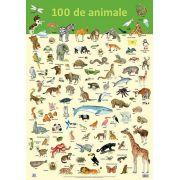 Plansa - 100 de animale