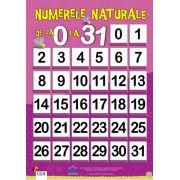 Plansa - Numerele naturale de la 0 la 31