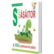 S de la Sasaitor - Editie cartonata, Greta Cencetti, Didactica Publishing House
