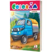 Coloram camion
