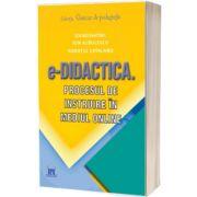 e-Didactica. Procesul de instruire in mediul online