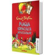 Magia copacului departarilor, volumul II, Enid Blyton, Arthur