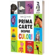 Prima carte despre culori. Bebe invata