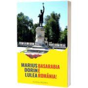 Basarabia e Romania!, Marius Dorin Lulea, Vicovia