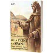 De la print la sfant. Viata Sfantului Sava Arhiepiscopul Serbiei, sf. Nicolae Velimirovici, Predania